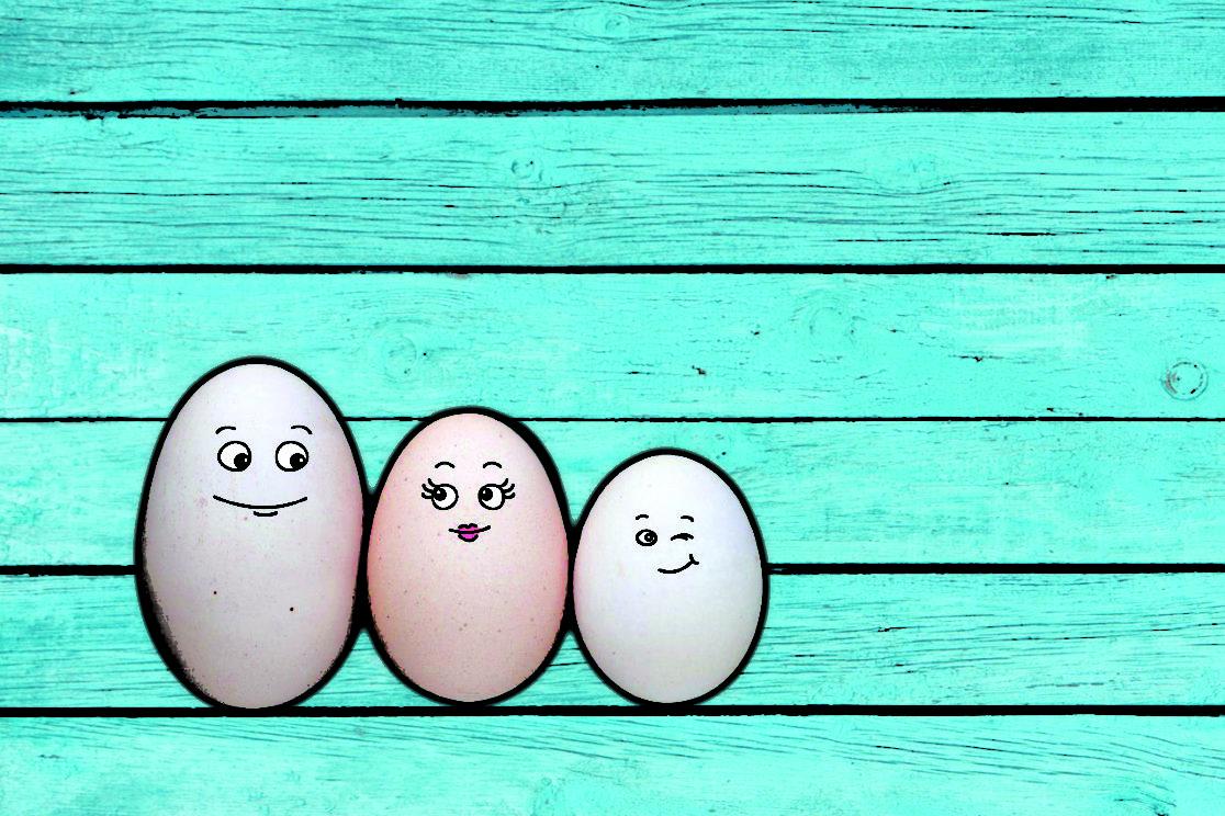 فواید و مضرات مصرف تخم مرغ و تاثیر آن بر رشد کودکان خردسال