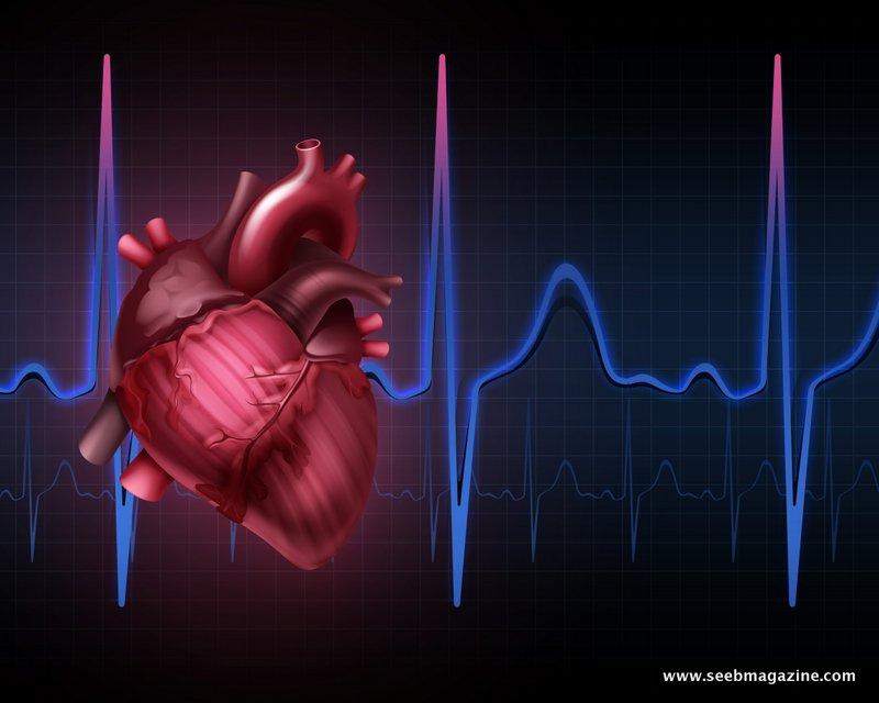 بیماری های قلبی – عروقی و سکته های قلبی و مغزی (اولین علت مرگ در دنیا)