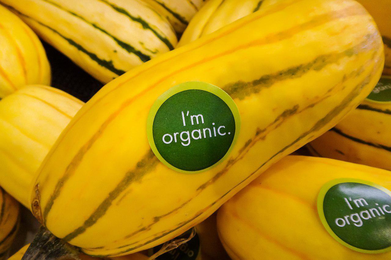 غذاهای ارگانیک – قسمت دوم