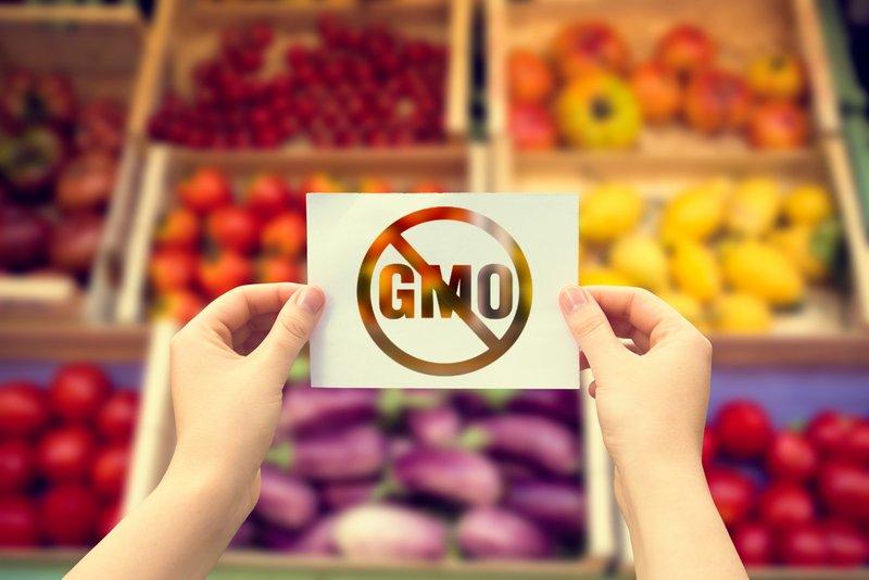 محصولات دستکاری شده ژنتیکی (GMO) و تاثیرات مضر آنها بر روی محیط زیست و سلامت انسان – قسمت اول