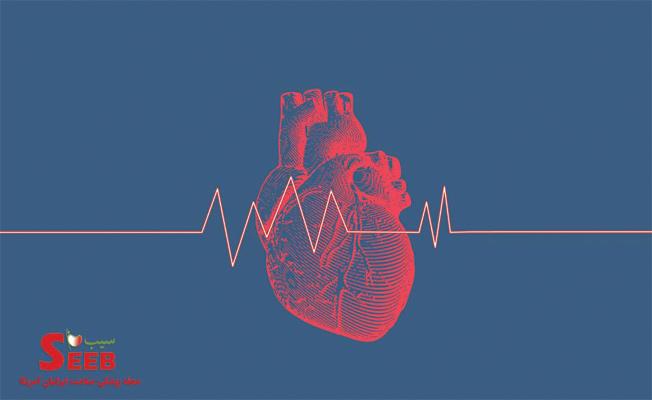 کار قلب چیست