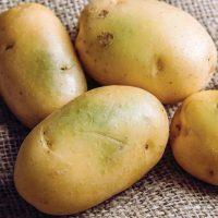 سبز شدن سیب زمینی؛ آیا سیب زمینی سبز سرطان زا است؟