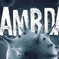 همه چیز دربارهی کرونا لامبدا؛ لامبدا کرونا چیست؟