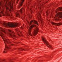 بهترین راه برای افزایش پلاکت خون